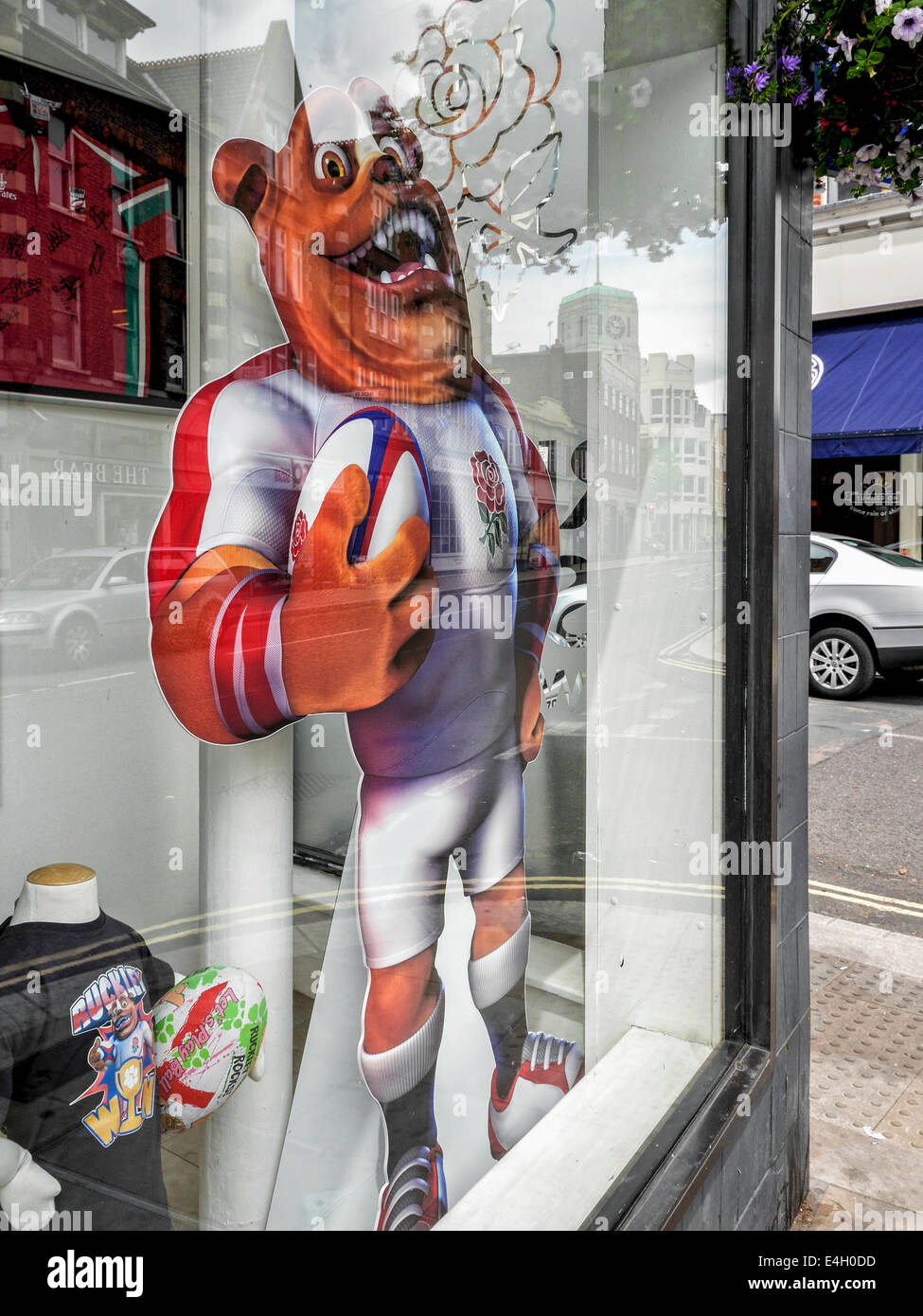 Ruckley, bulldog ambassador and mascot of the English rugby union team with ball and rugby shirt, The Rugby Store, - Stock Image