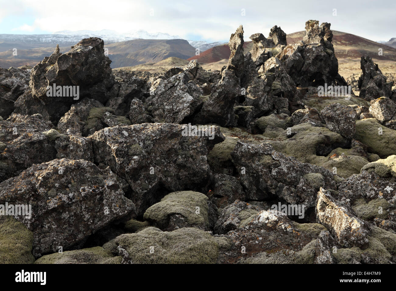 Rocks in a lava field at the Beserkjaravn near Bjarnahofn, Iceland. - Stock Image
