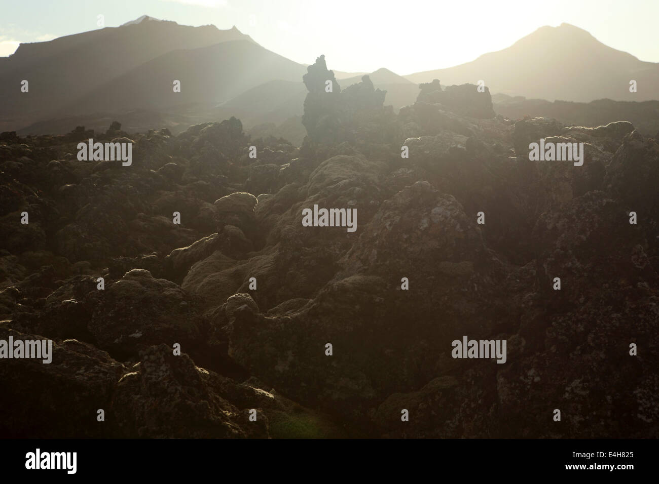 Sunlight and shade on a lava field at the Beserkjaravn near Bjarnahofn, Iceland. - Stock Image