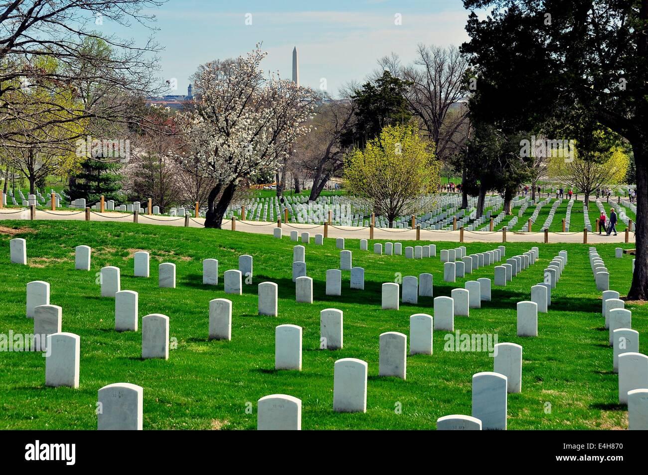 Arlington, Virginia:  Row upon row of military gravesites at Arlington National Cemetery   * Stock Photo