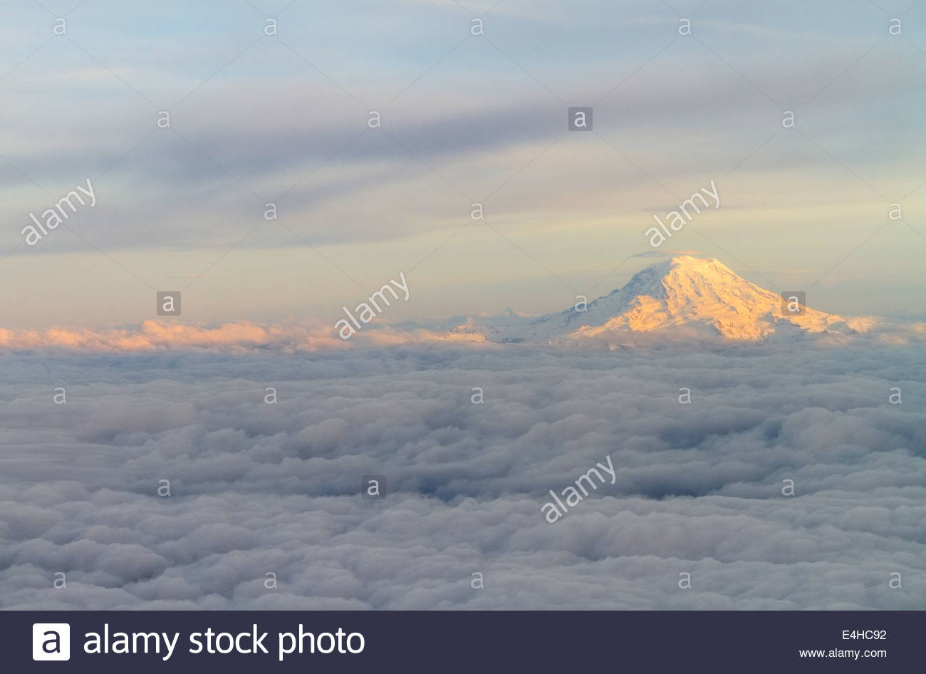 Mount Rainier At Sunset Above The Clouds - Stock Image