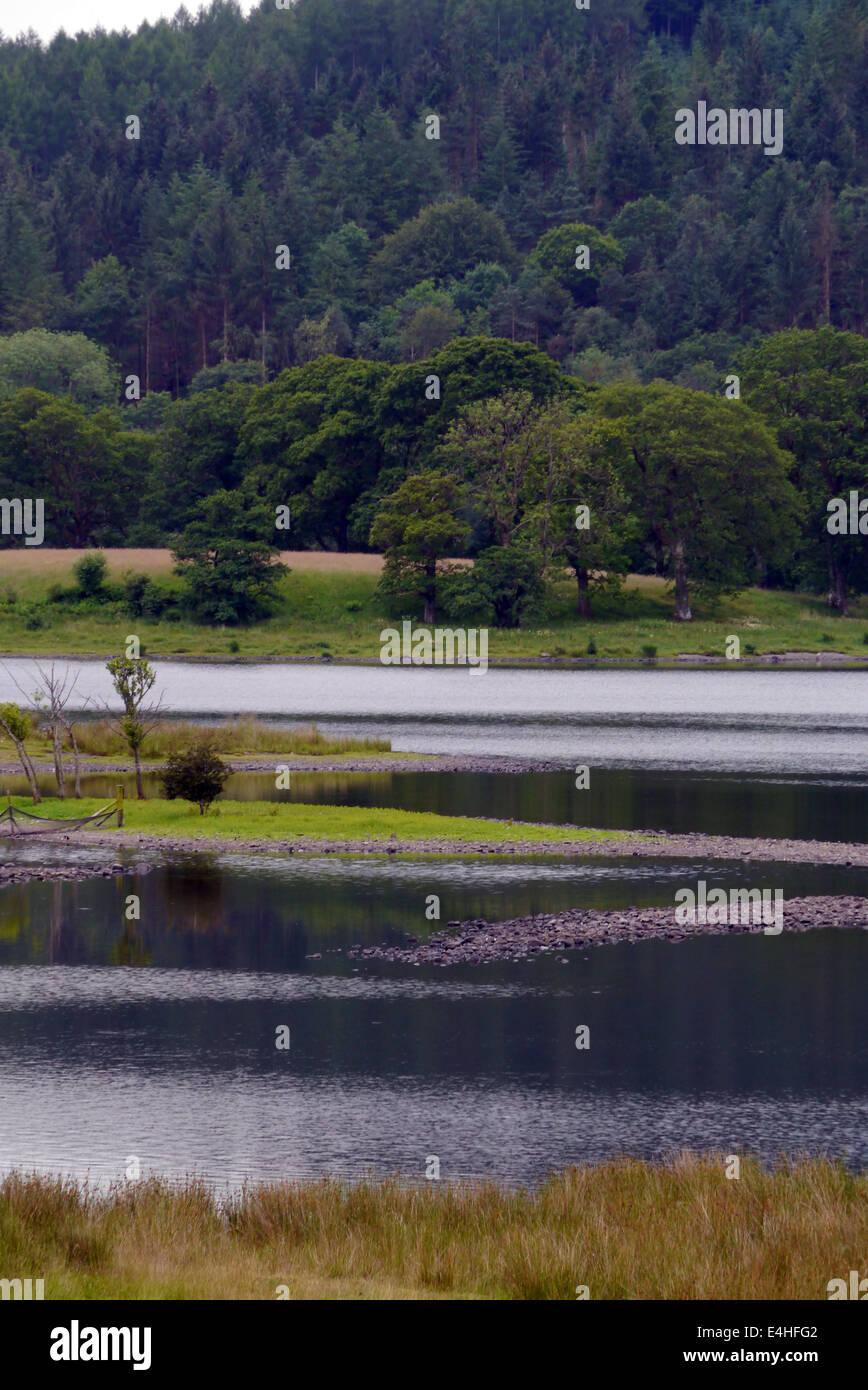 Coniston water, lake district, cumbria. - Stock Image