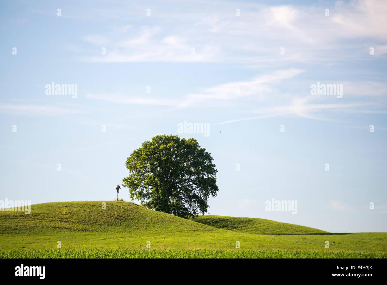 Hill with cruzifix near Rott, Bavaria, Germany Stock Photo