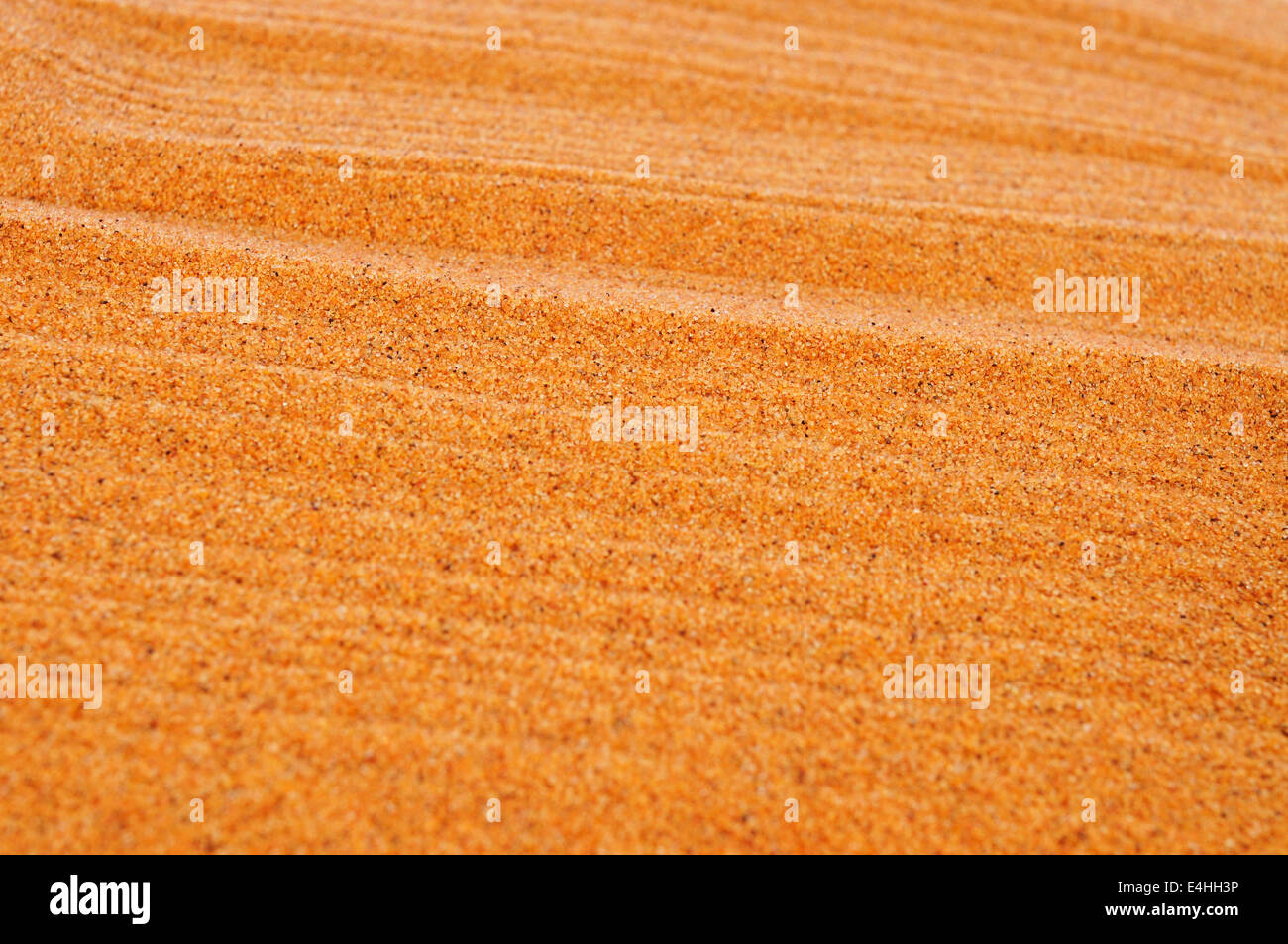 closeup of raked sand of a beach, of a sandpit or of a zen garden - Stock Image