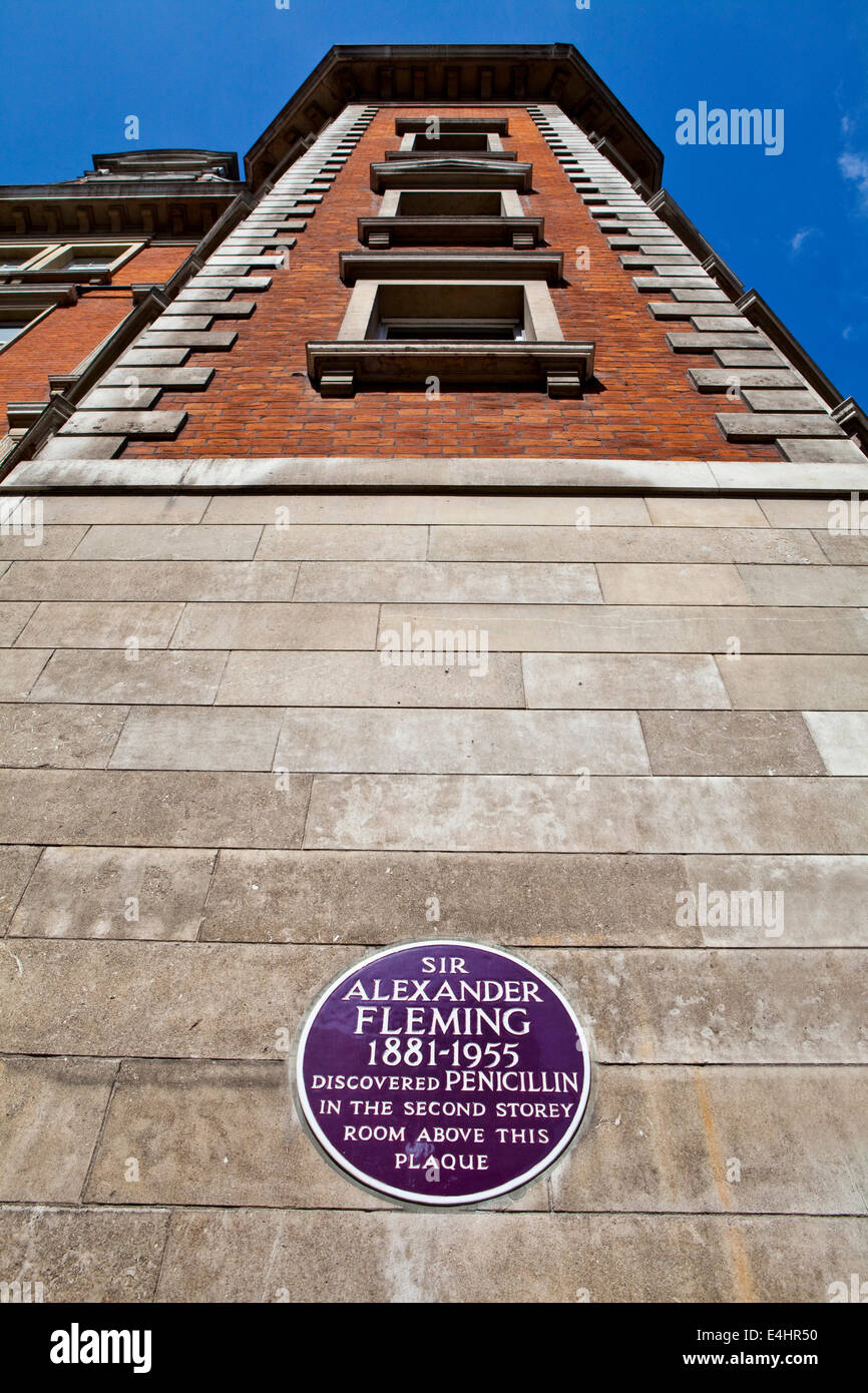 Sir Alexander Fleming Plaque at St. Mary's Hospital in London.  The location where Fleming discovered Penicillin. - Stock Image
