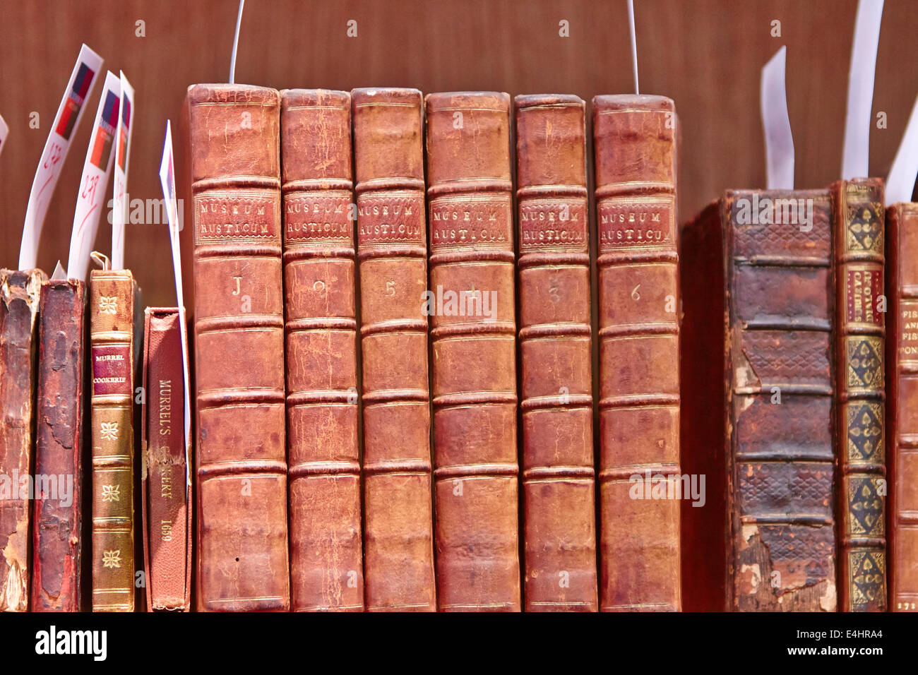 Old leather bound Museum Rusticum books about farming and agriculture - Stock Image