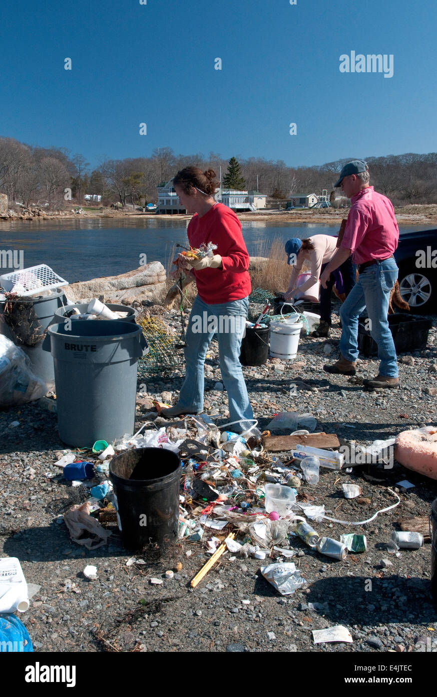 Removing and sorting trash from the beach on Eastern Point in Gloucester, Massachusetts - Stock Image