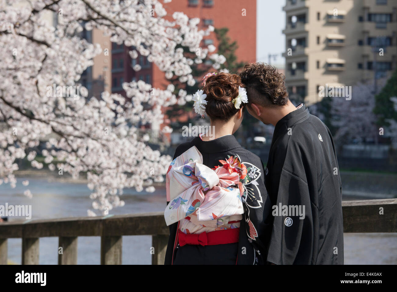 Young couple in traditional wedding attire on bridge in Higashi Chaya district during cherry blossom season, Kanazawa, - Stock Image