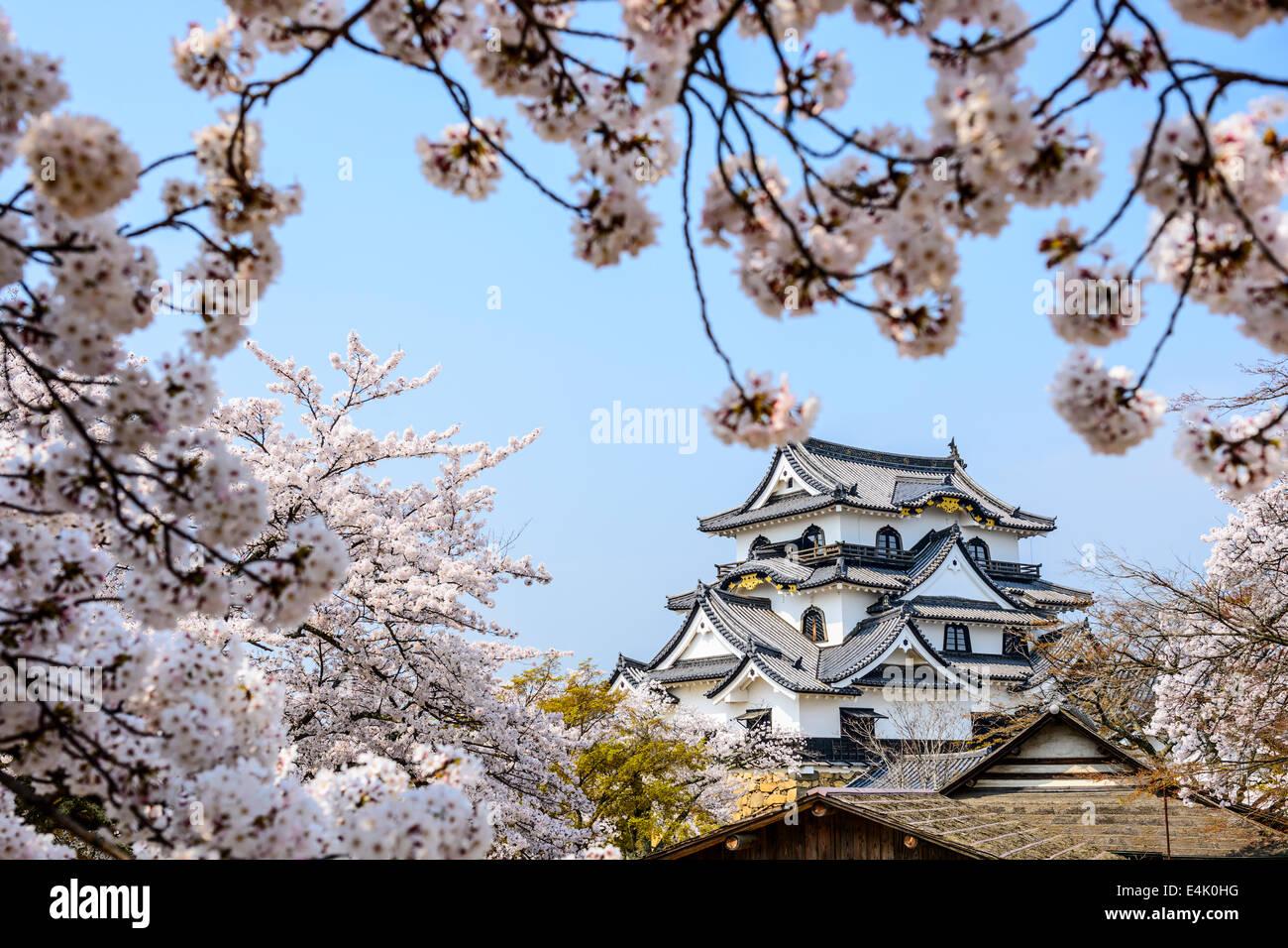 Hikone Castle in Hikone, Shiga Prefecture, Japan. - Stock Image