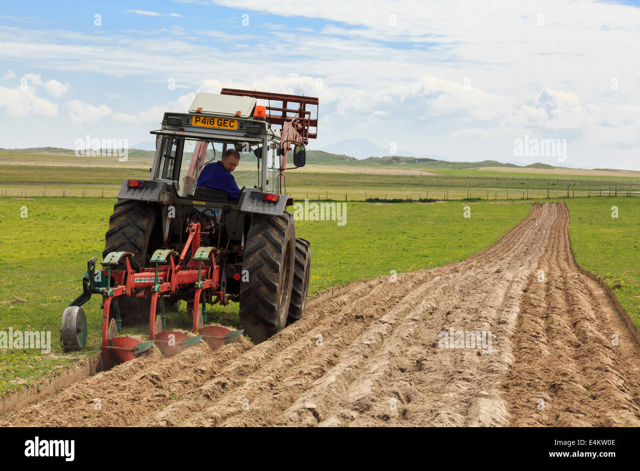 Croft farmer ploughing furrows in a field of traditional country side machair grassland using a tractor pulling - Stock Image