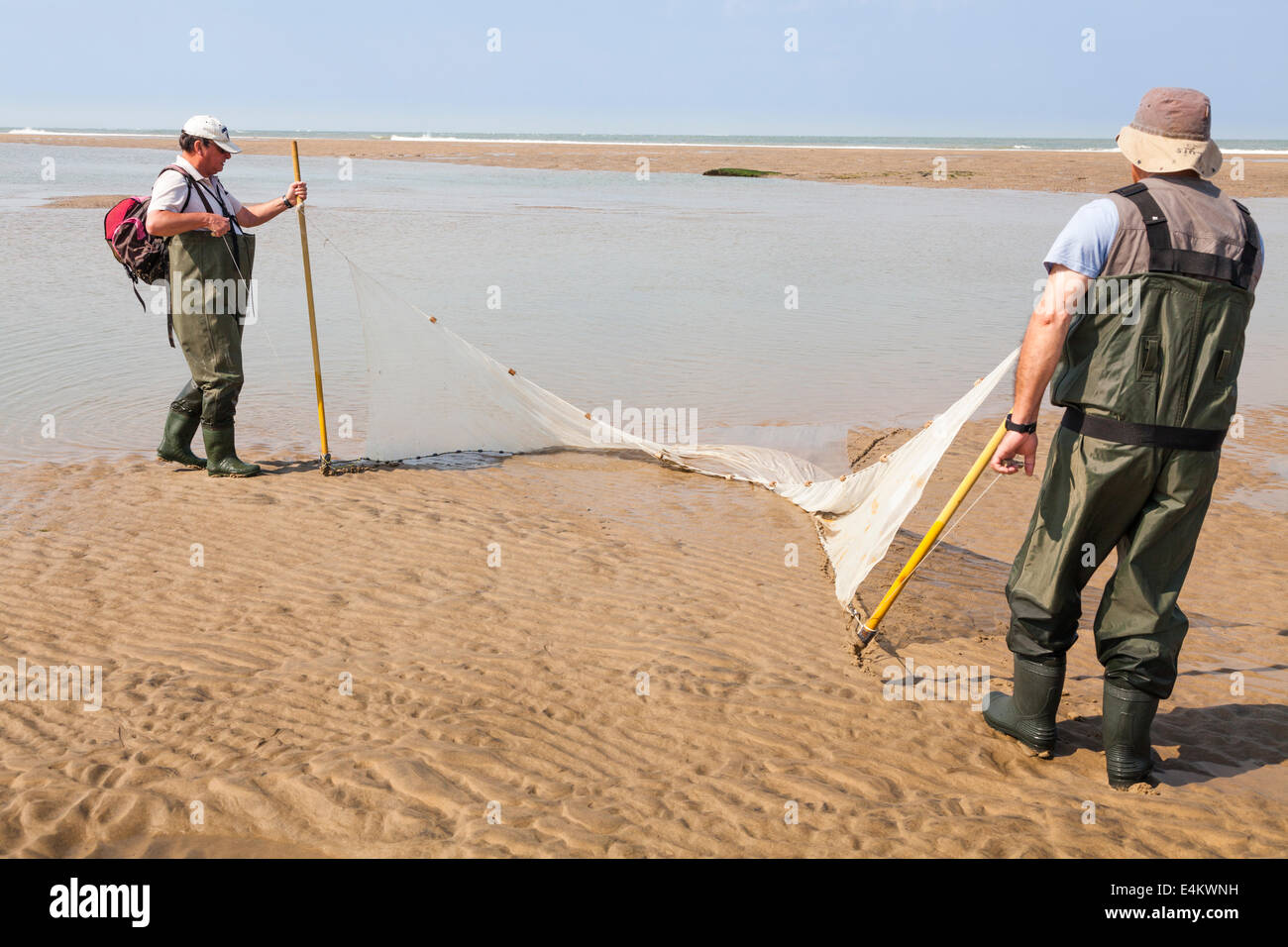 Two fishermen drag their trawl net onto the beach when trawling for fish in a pool left by the receding tide. - Stock Image