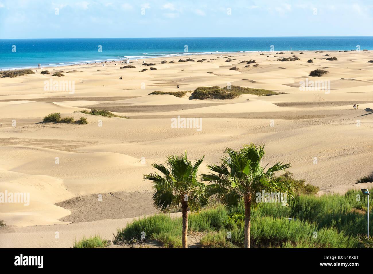 Sandy dunes - Stock Image