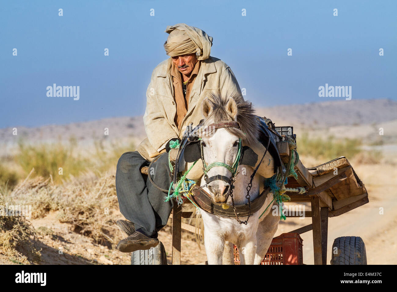Traditional transportation in the desert south of Tozeur - Stock Image