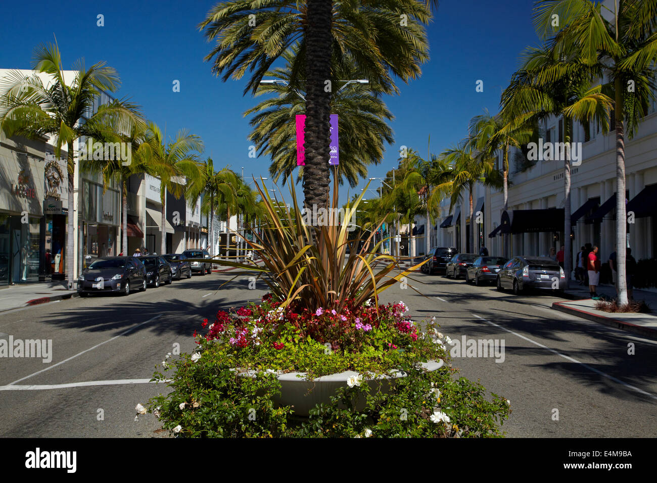 palm trees on rodeo drive luxury shopping street in beverly hills stock photo 71746510 alamy. Black Bedroom Furniture Sets. Home Design Ideas
