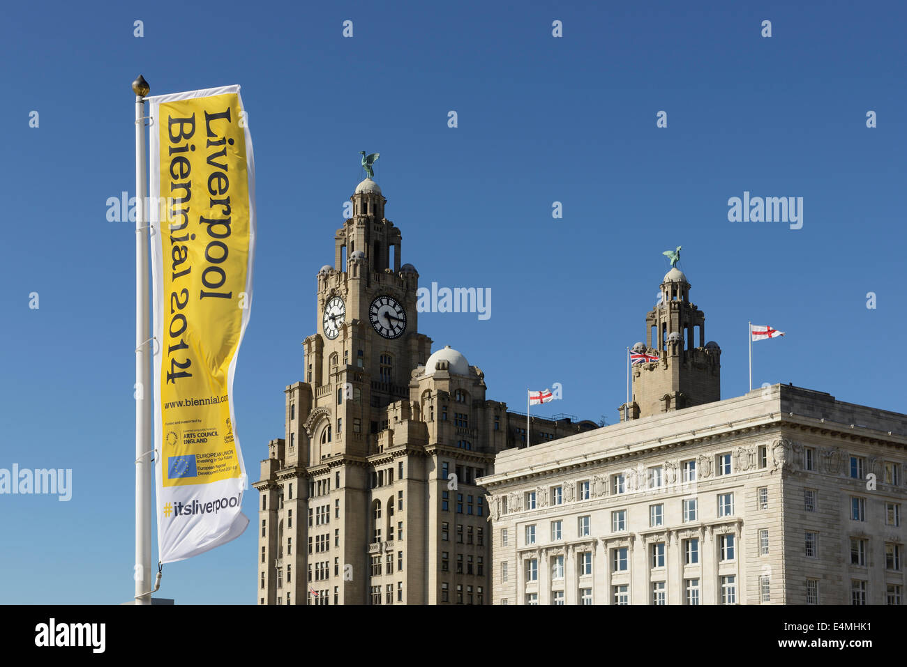 Banners for the Liverpool Biennial 2014 outside the Liver Building in Liverpool city centre - Stock Image