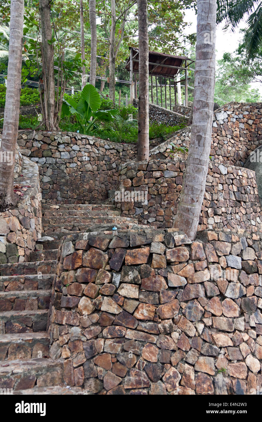 stone staircase in the jungles - Stock Image