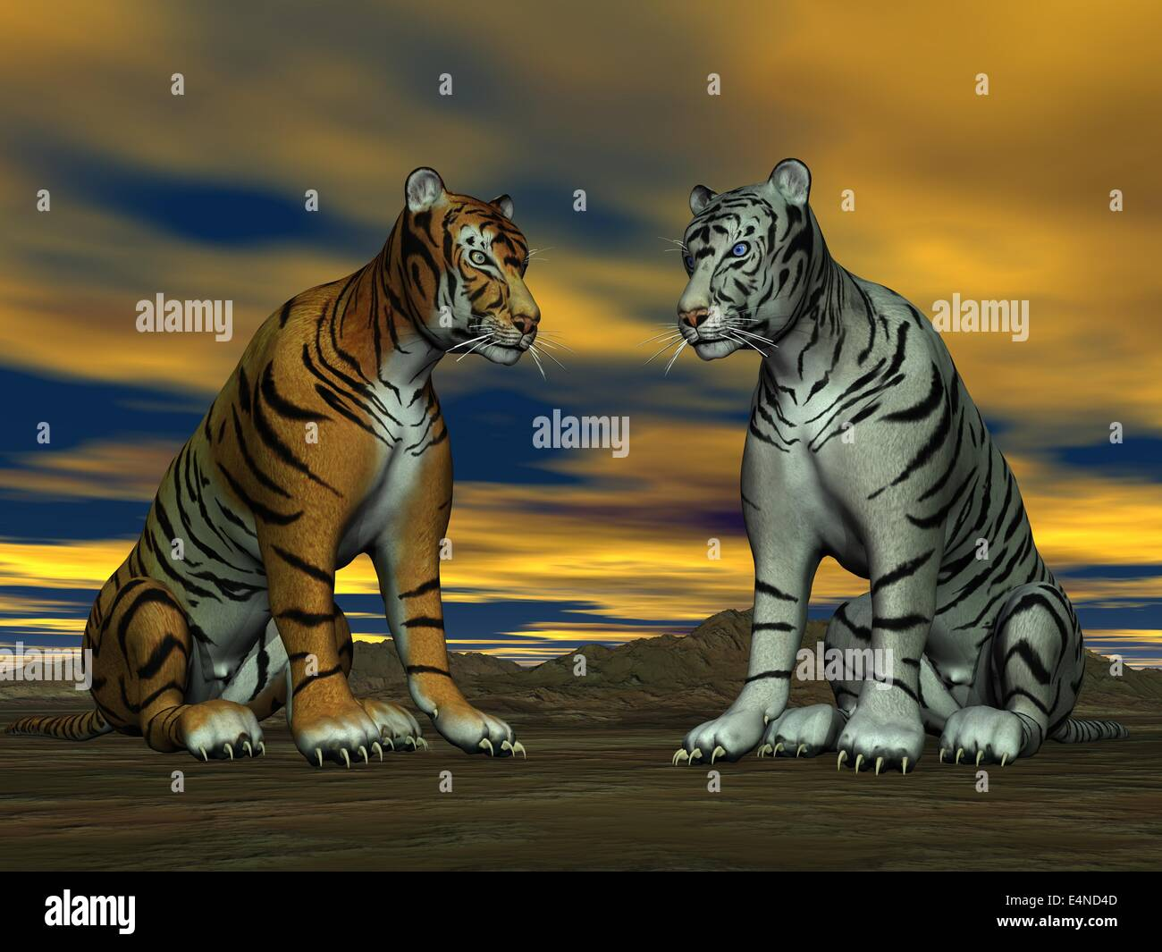 two 3d tigers stock photos & two 3d tigers stock images - alamy