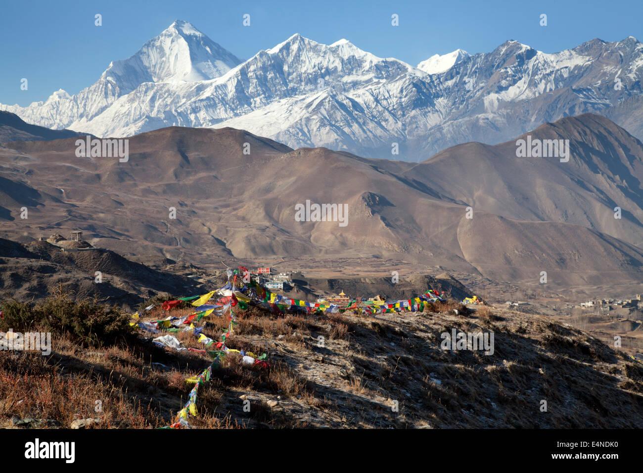 Dhaulagiri and Prayer Flags from the Thorung La Pass, Muktinath, Annapurna, Nepal - Stock Image