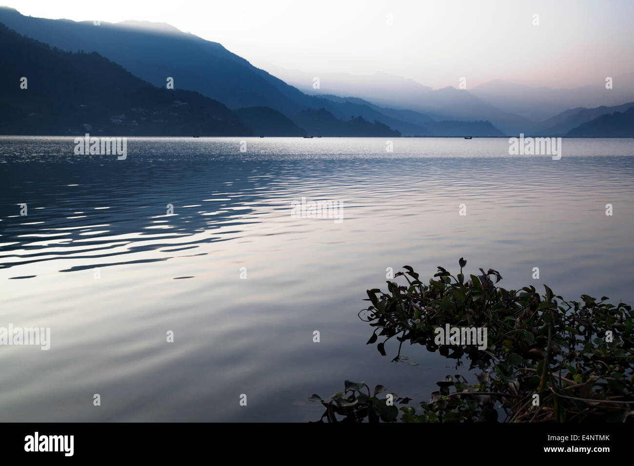 Phewa Lake (Phewa Tal) at Pokhara, Kaski District, Nepal - Stock Image