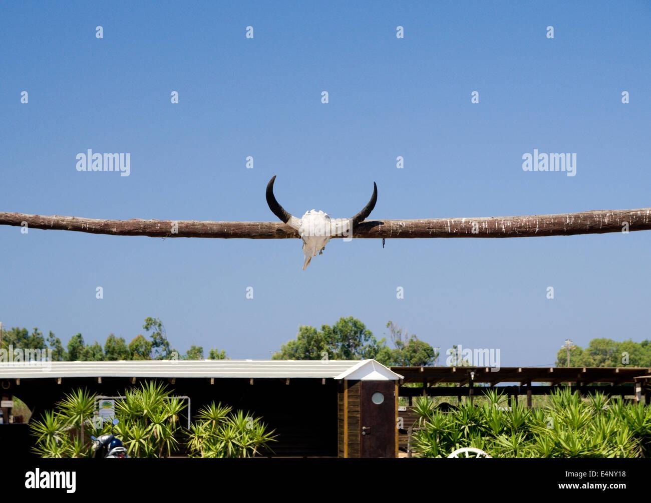 Horns above gateway to the Salt Lake Stables, Tingaki, Kos Island, Dodecanese Islands, Greece. - Stock Image