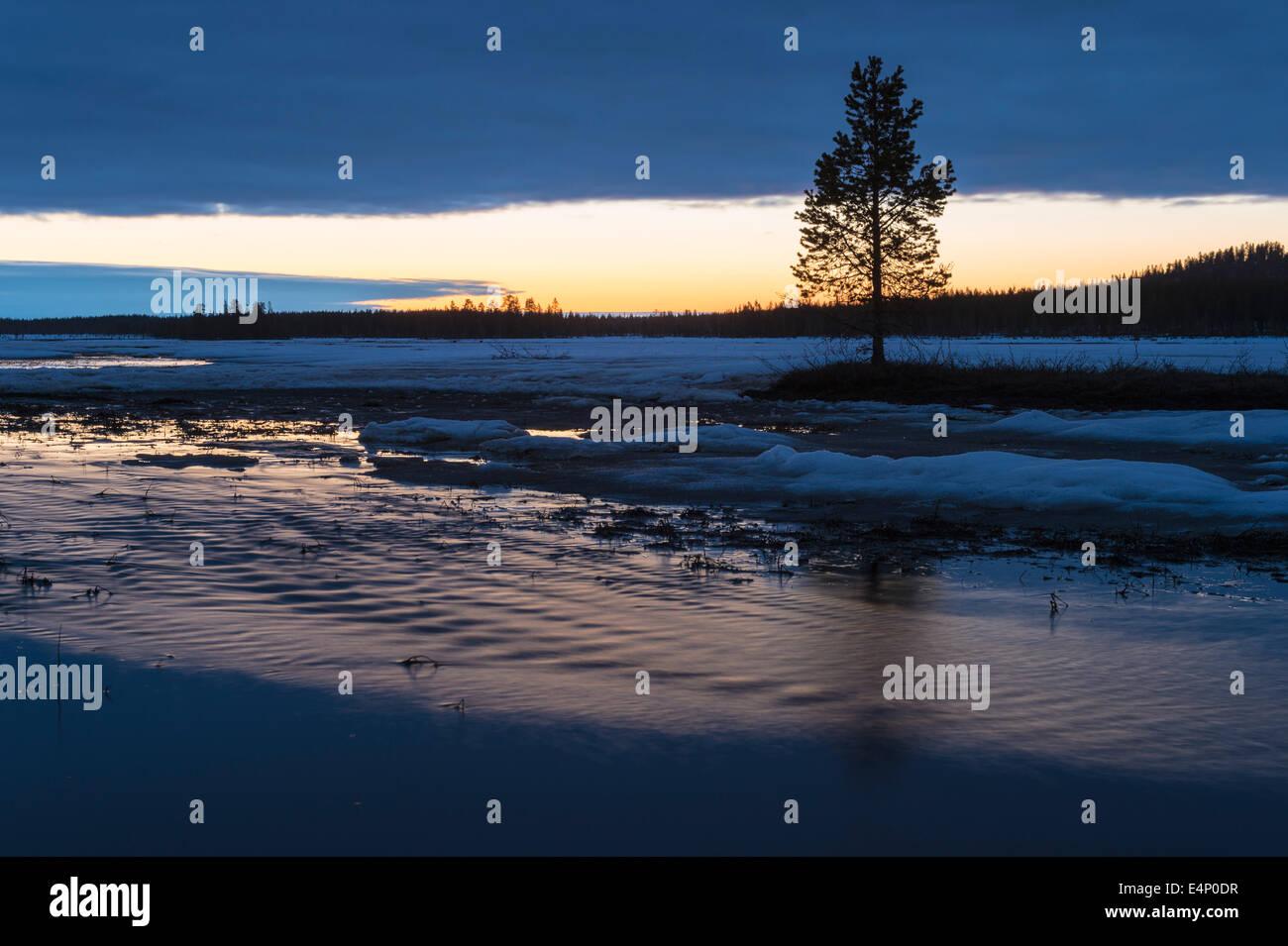 Sumpflandschaft bei Nacht, Norrbotten, Lappland, Schweden - Stock Image