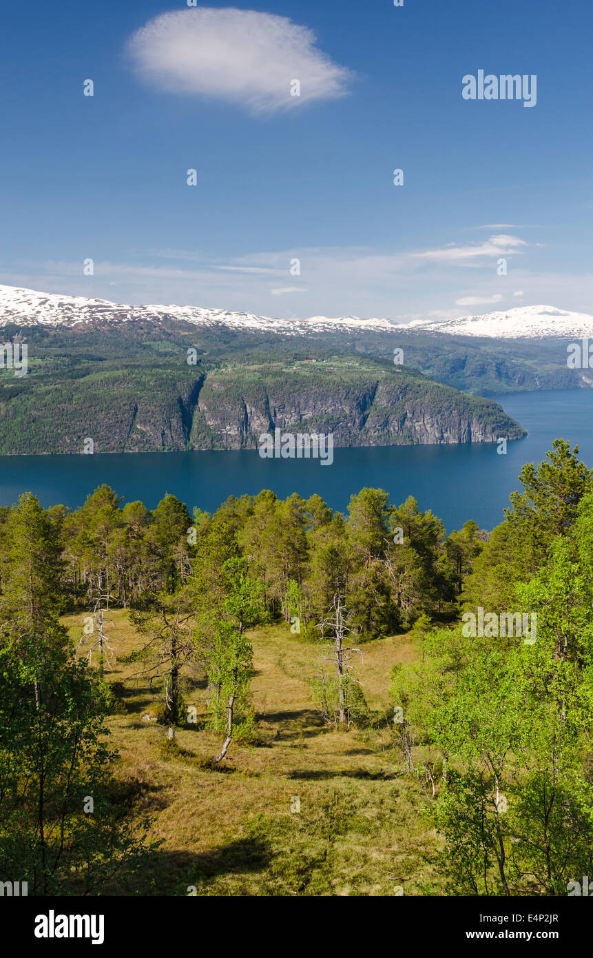 Innvikfjorden, Stryn, Sogn og Fjordane Fylke, Norwegen, - Stock Image