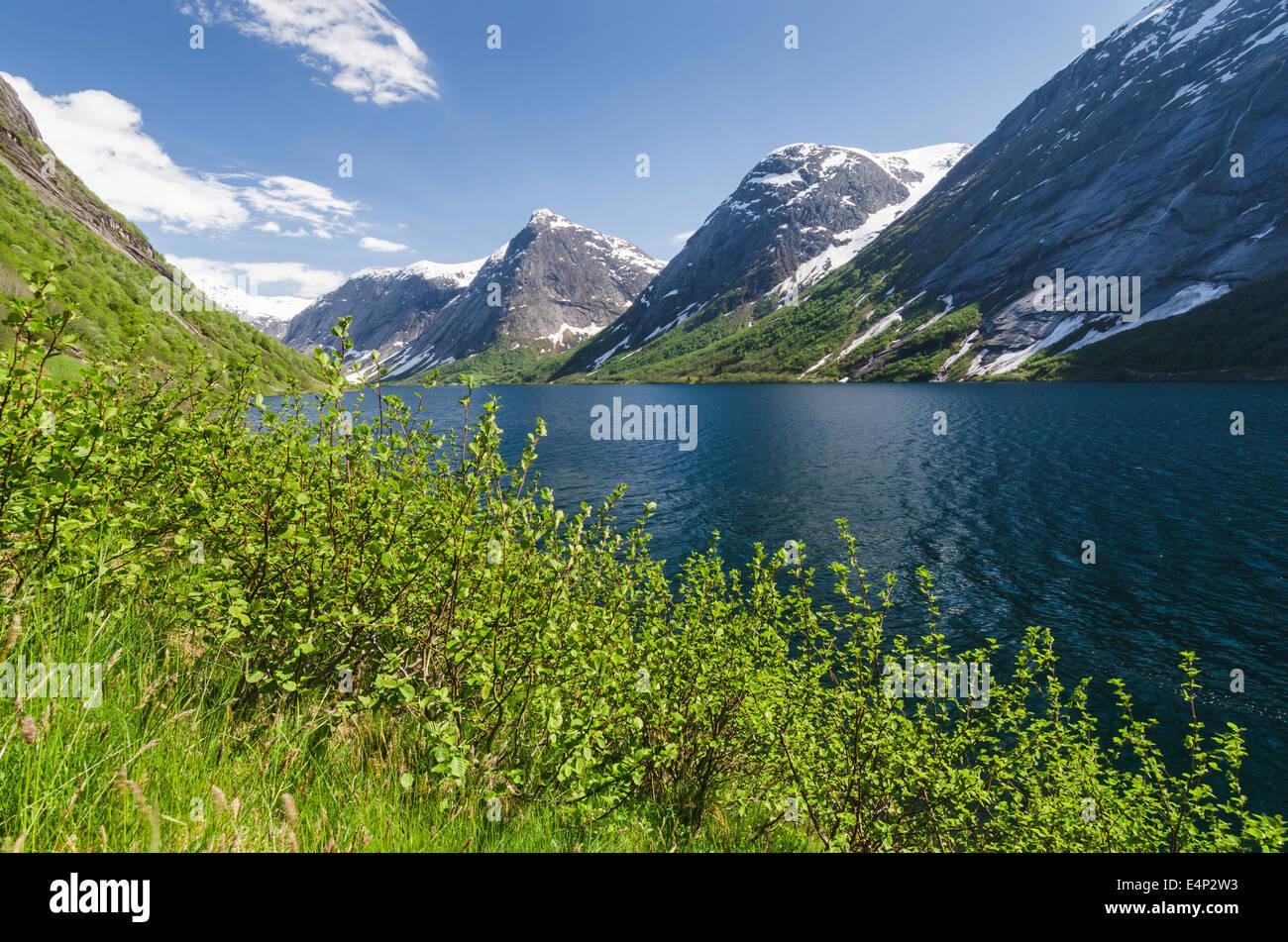 Landschaft am Kjoesnesfjorden, Joelster, Sogn og Fjordane Fylke, Norwegen, - Stock Image