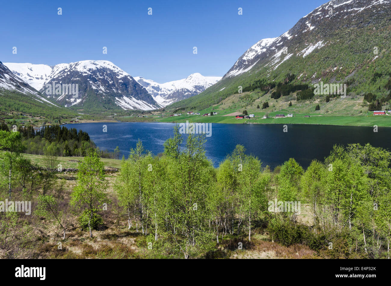 Landschaft am See Dalavatnet, Sogndal, Sogn og Fjordane Fylke, Norwegen - Stock Image