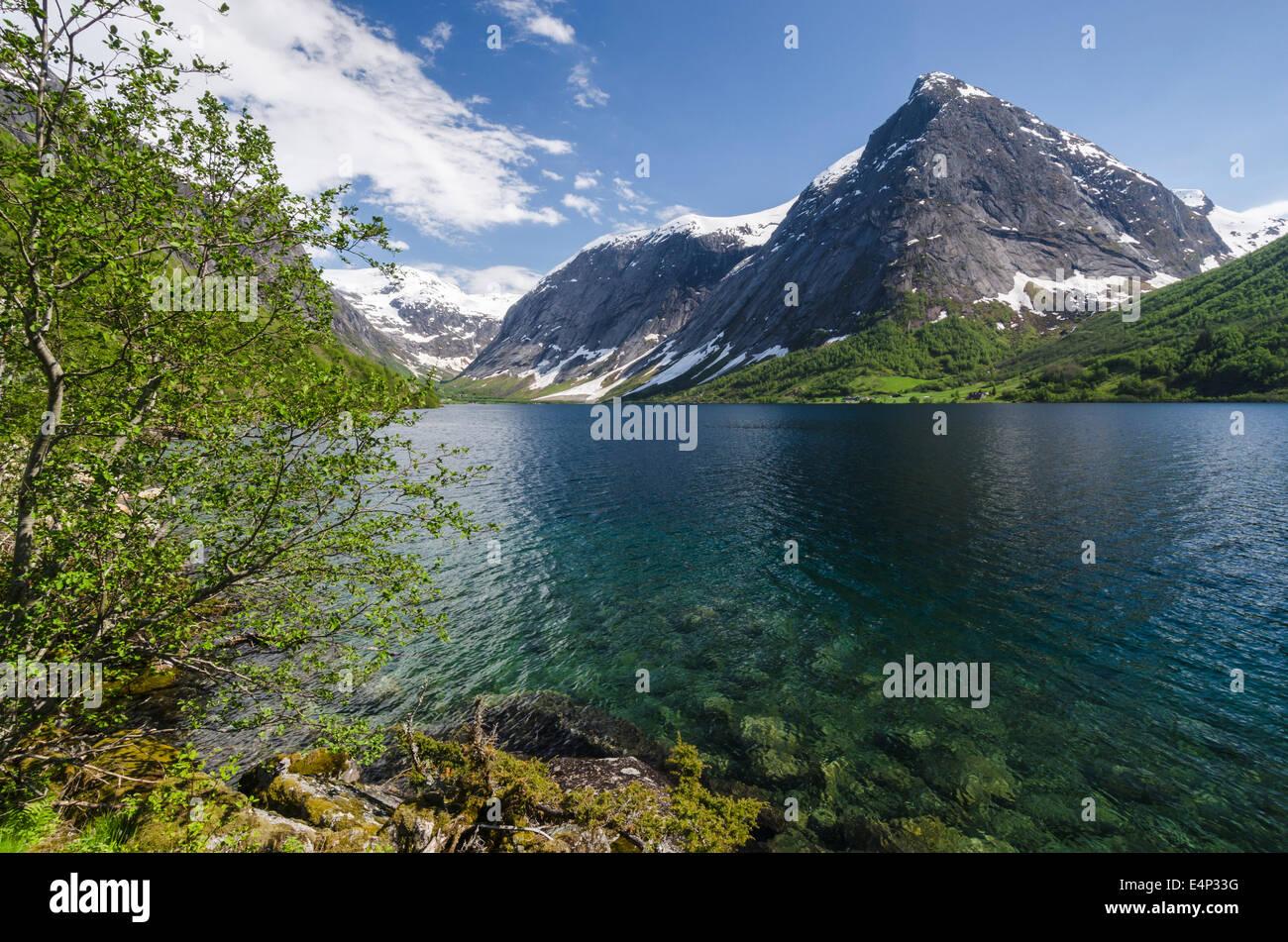 Landschaft am Kjoesnesfjorden, Joelster, Sogn og Fjordane Fylke, Norwegen - Stock Image