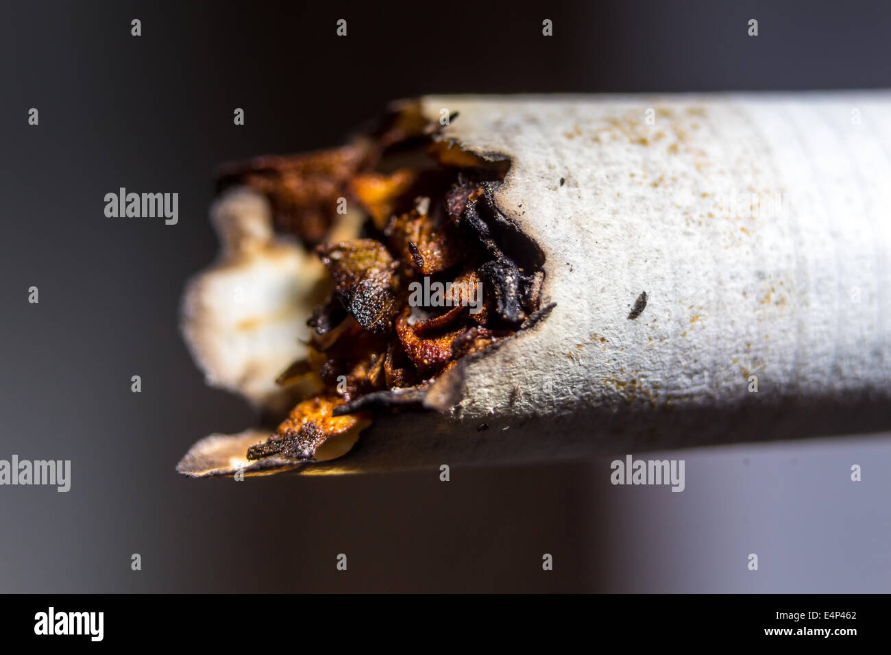 Closeup o unhealthy smoked cigarette - Stock Image