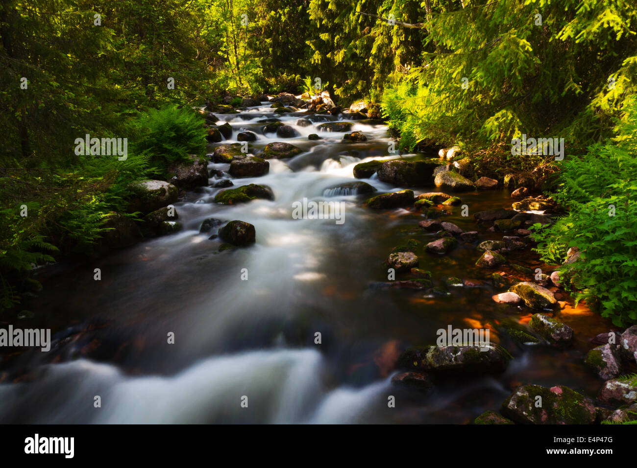 Long time exposure of water flowing in a stream at Njupeskär, Fulufjället, Dalarna, Sweden. Stock Photo