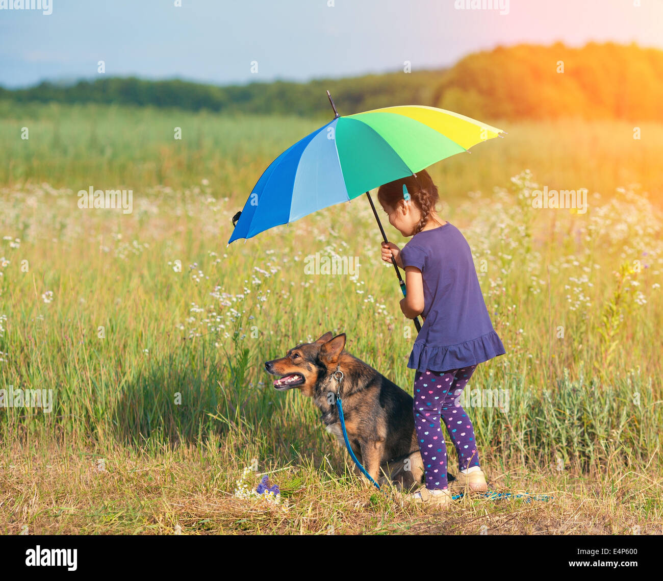 Little girl with dog under umbrella in sunny weather - Stock Image