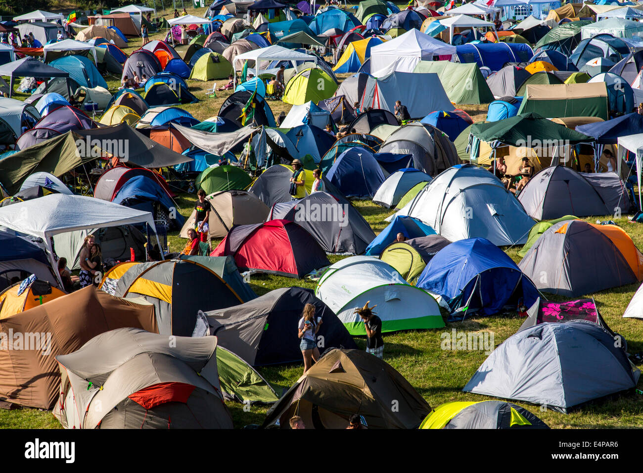 Many tents on a lawn, at an open air festival, camping, - Stock Image