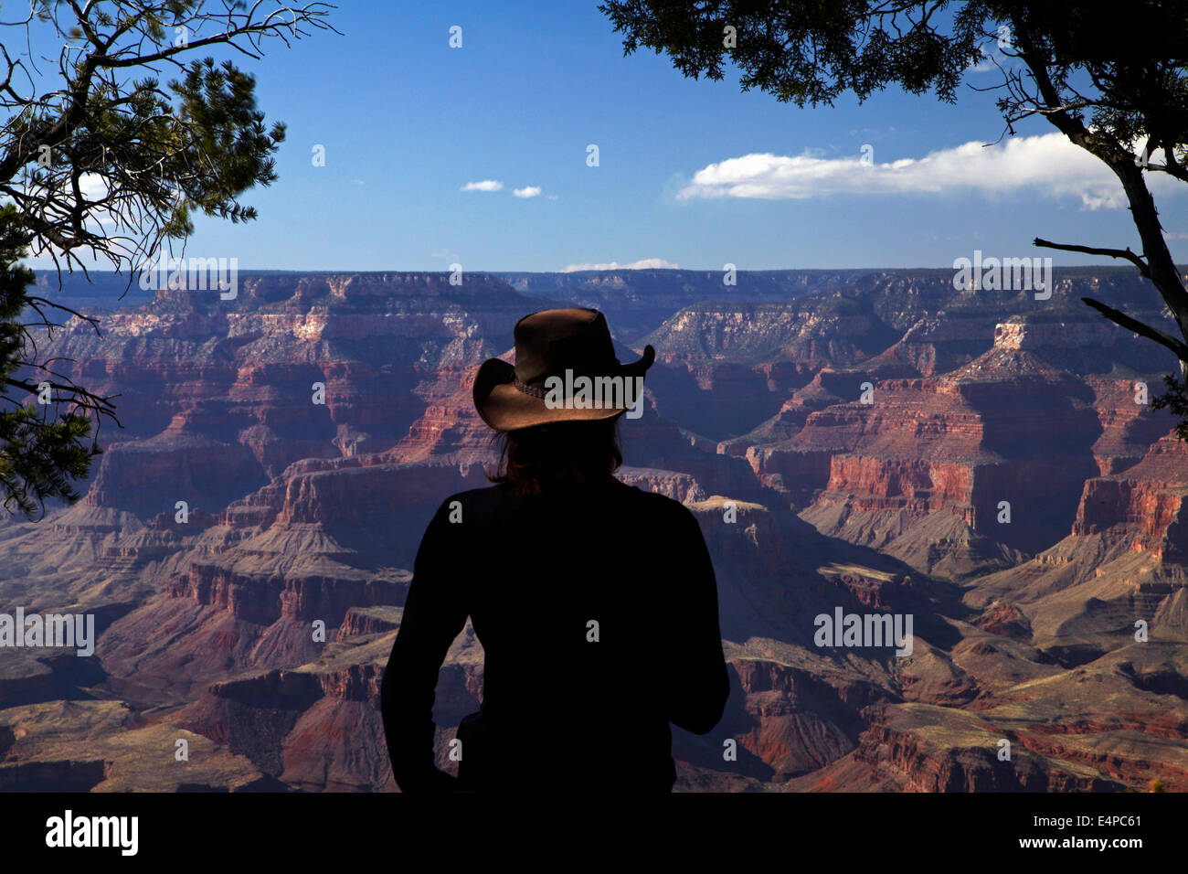 Woman viewing Grand Canyon from South Rim Trail, Grand Canyon National Park, Arizona, USA Stock Photo
