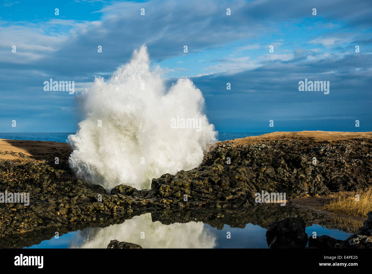 Fountain from a blowhole, surf shooting up through rocks from below, Anarstapi, Snaefellsness peninsula, Iceland - Stock Image