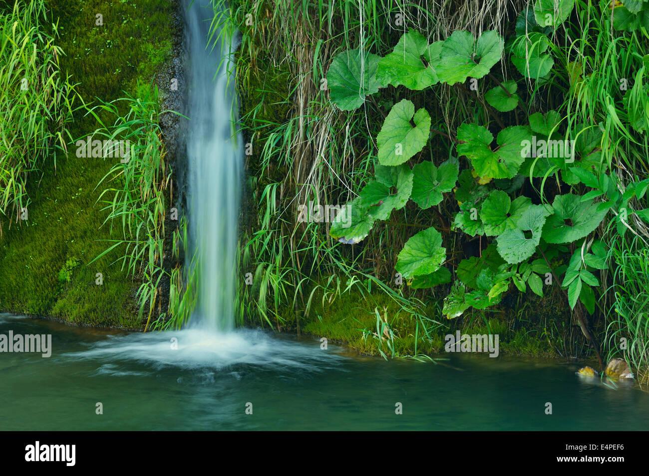 Waterfall, Plitvice Lakes National Park, Plitvice Jezera, Lika-Senj, Croatia - Stock Image