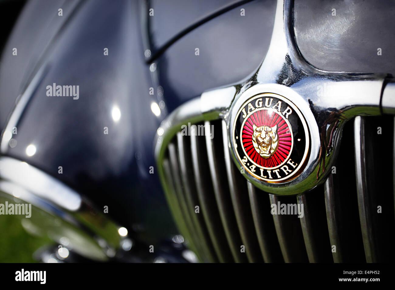 Emblem on navy blue Jaguar Mark 1 saloon car - Stock Image