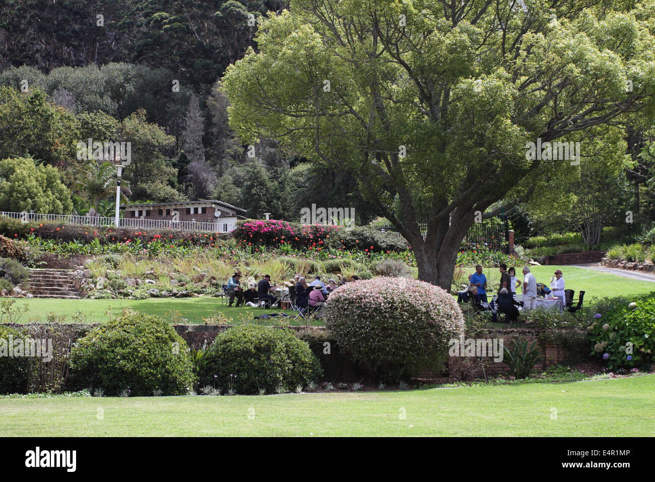 People gather for a picnic under a tree, Harcroft House, Upper Constantia, South Africa - Stock Image