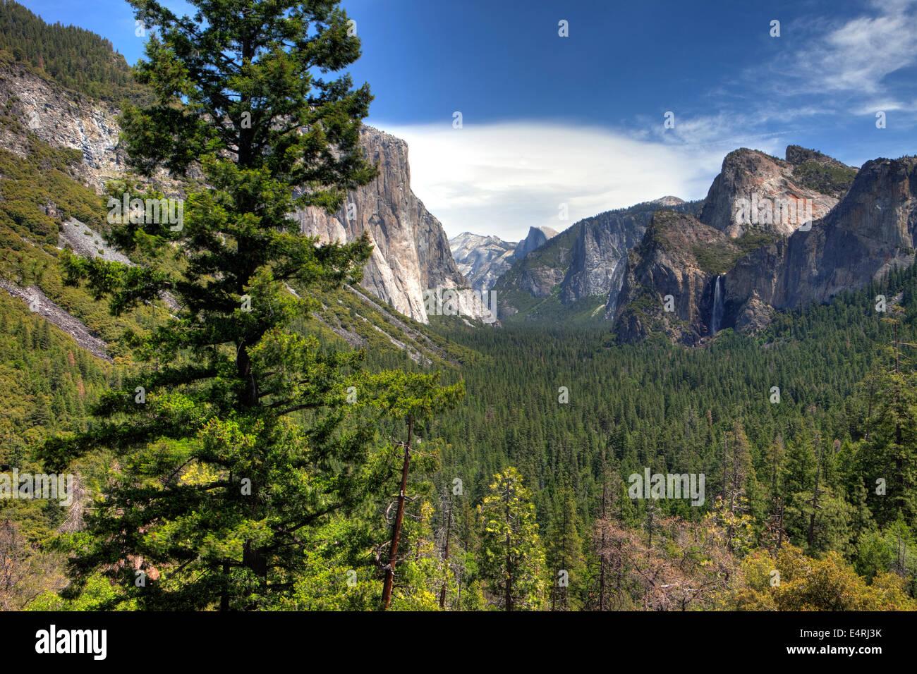 Yosemite National Park, Calif. USA - Stock Image