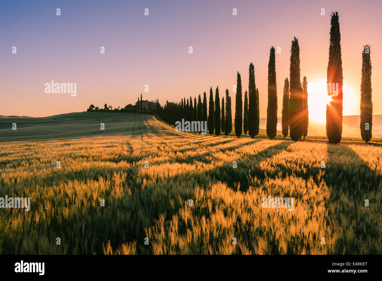 In the heart of Tuscany, in the countryside of the Val d'Orcia, stands Agriturismo Poggio Covili Stock Photo