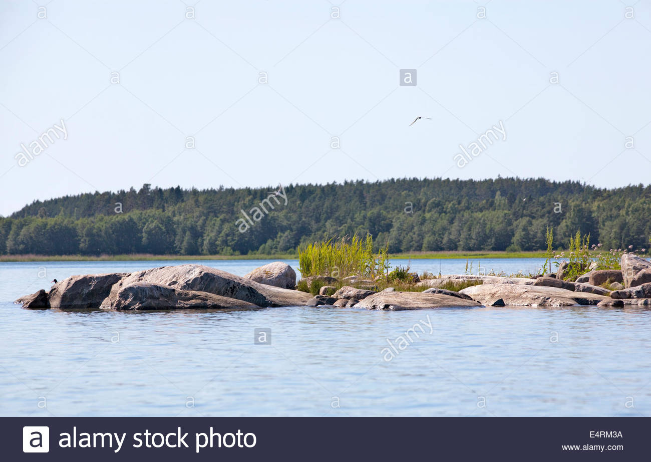 Sunny summer day at the coast of Finland - Stock Image