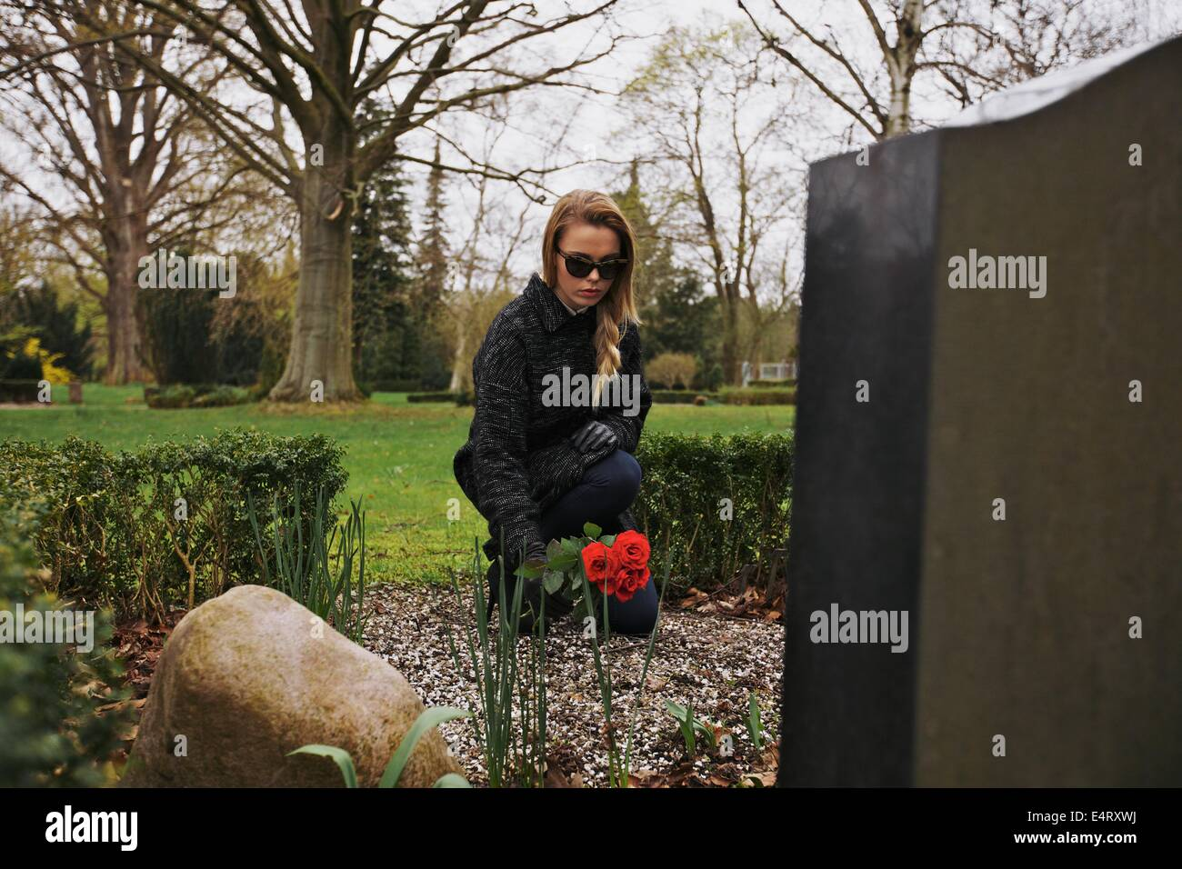 Young female grieving at cemetery. Young lady placing roses on the grave of her family member. - Stock Image