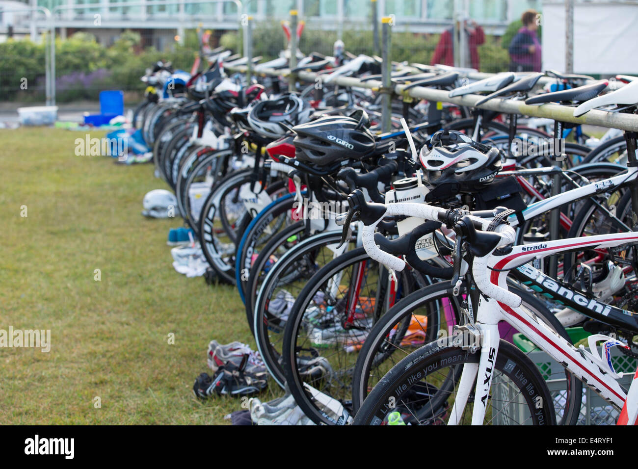 Bikes lined up in transition stage Plymouth Triathlon 2014 - Stock Image