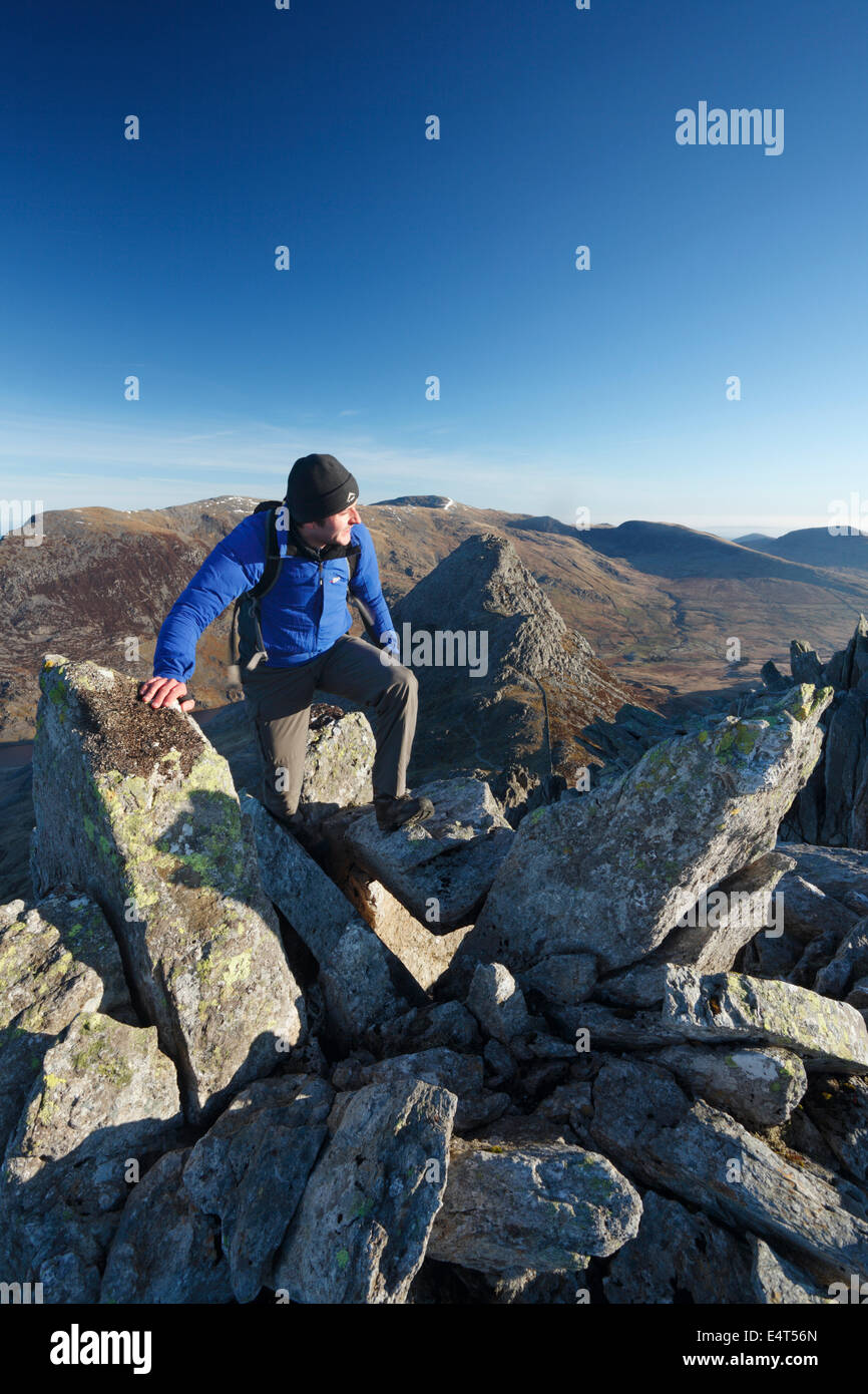 Hillwalker scrambling on Bristly Ridge with Tryfan in the distance. Snowdonia National Park. Conwy. Wales. UK. - Stock Image