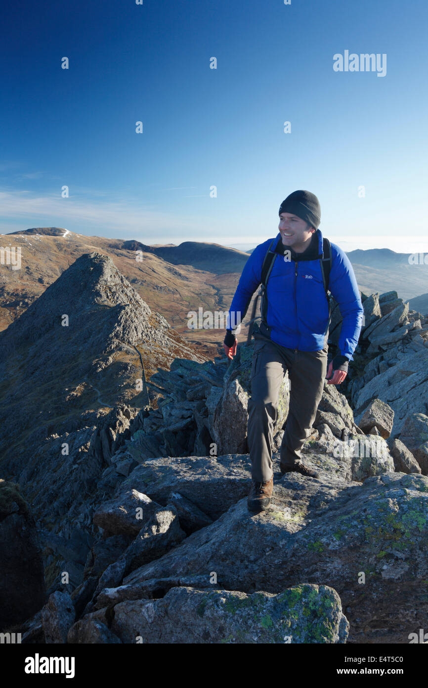 Hillwalker on Bristly Ridge with Tryfan in the Background. Snowdonia National Park. Wales. UK. - Stock Image