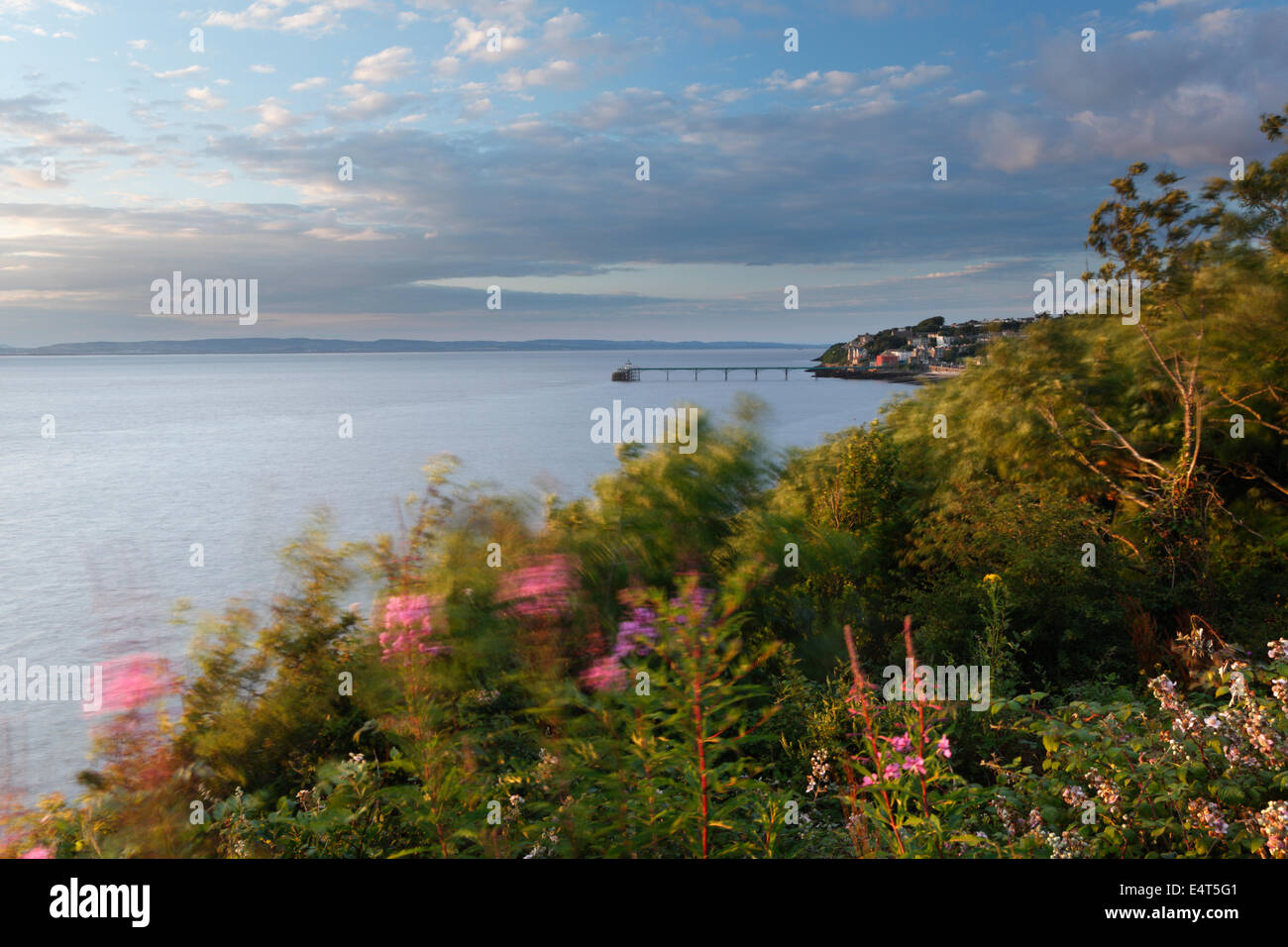 View from Poet's Walk, Clevedon. North Somerset, England, UK. - Stock Image