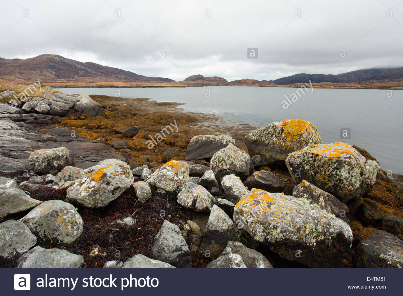 Lichen covered boulders by the side of Loch Aineort near Lochboisdale, South Uist, Outer Hebrides, Scotland. - Stock Image