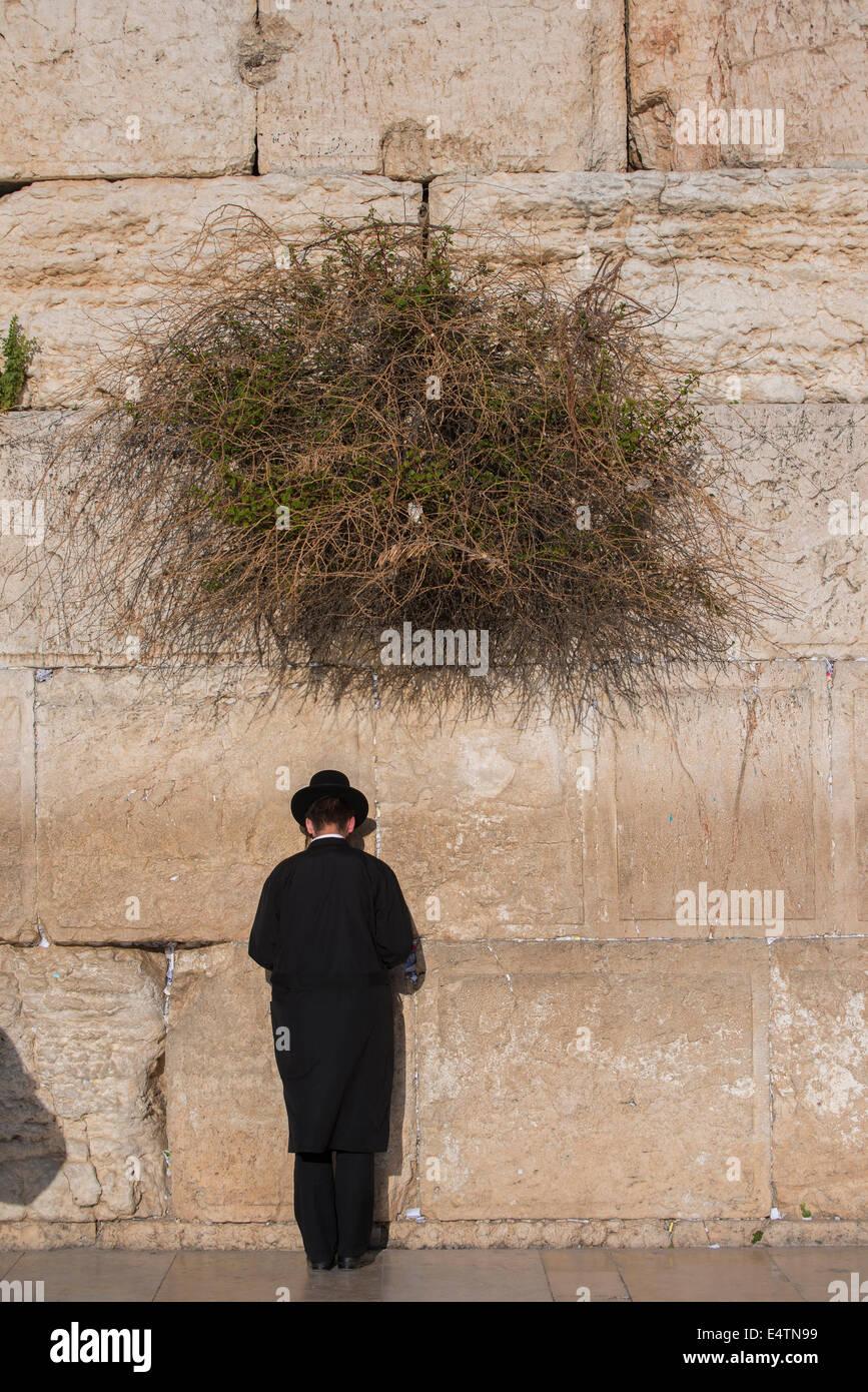 Young Jewish man praying at the Western wall / Wailing Wall, Jerusalem. Israel - Stock Image