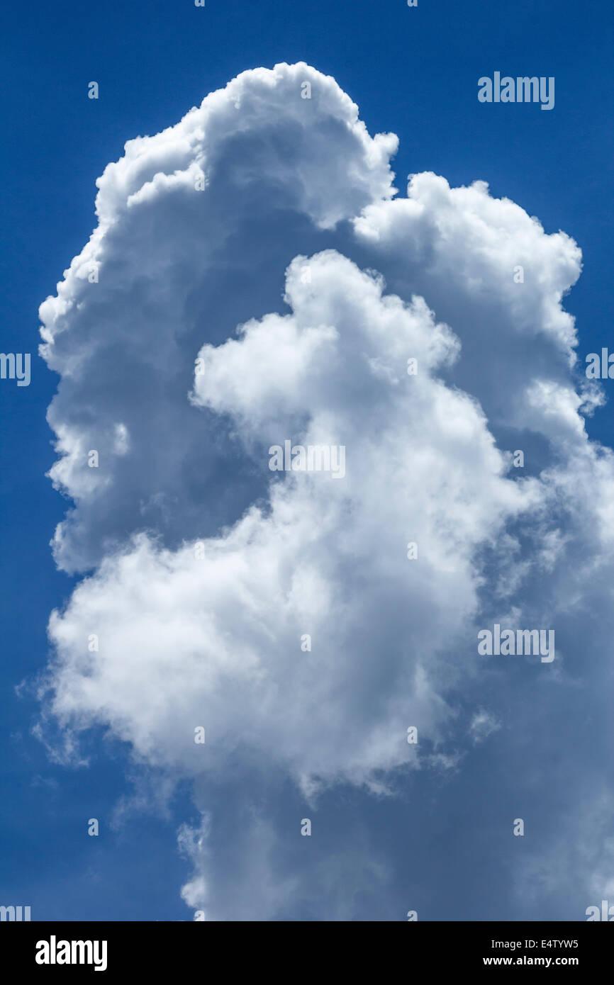 Beautiful cumulonimbus cloud - Stock Image