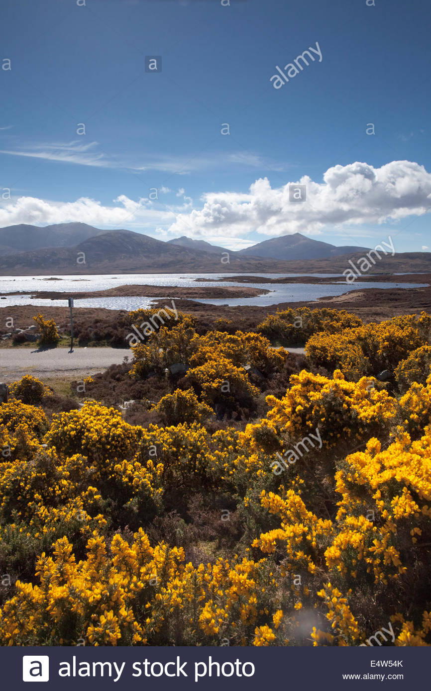 Loch Druidibeg National Nature Reserve, Isle of South Uist, Outer Hebrides, Scotland. - Stock Image